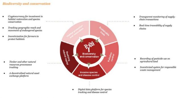 PWC Blockchain Biodiversity And Conservation