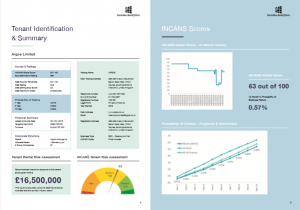 Income Analytics Example Report